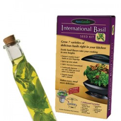 Kit de semences pour le Basilic International
