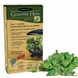 Kit de semences pour Herbes Gourmandes
